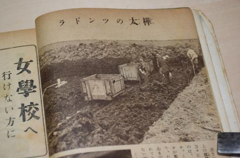 樺太のツンドラ 古い写真資料買取ります。