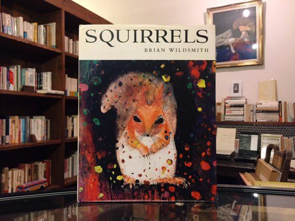 ブライアン・ワイルドスミス BRIAN WILDSMITH | SQUIRRELS| 絵本
