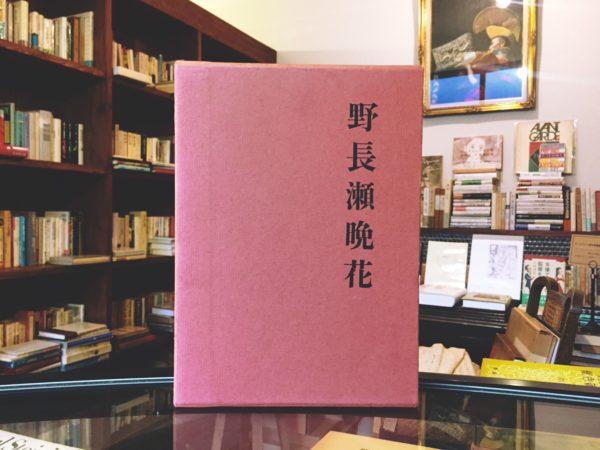 野長瀬晩花 | 和高伸二著 |和歌山県立近代美術館編 | 美術評論・伝記