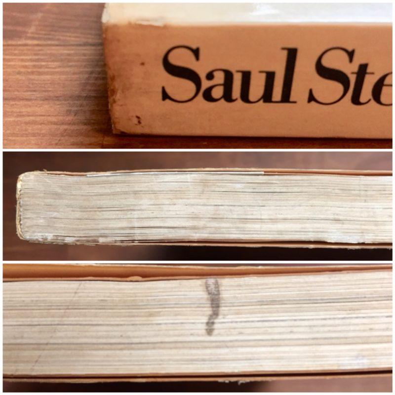 ソール・スタインバーグ Saul Steinberg: The Passport | 画集