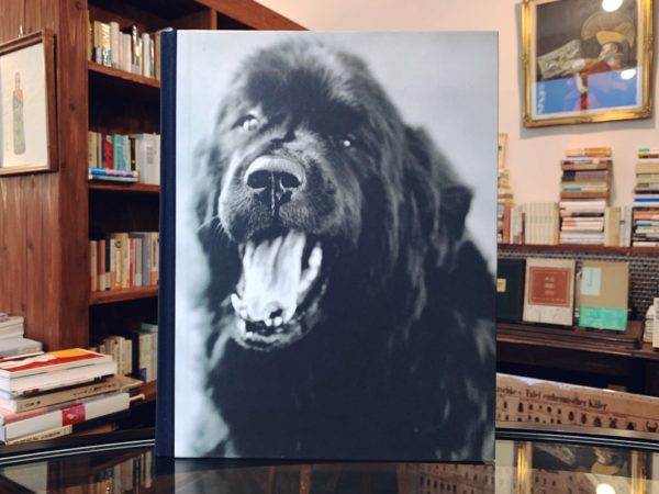 ブルース・ウェーバー BRUCE WEBER | GENTLE GIANTS: A BOOK OF NEWFOUNDLANDS | 写真集