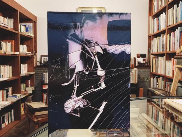 奈良原一高 デュシャン 大ガラスと瀧口修造 シガー・ボックス | 写真集