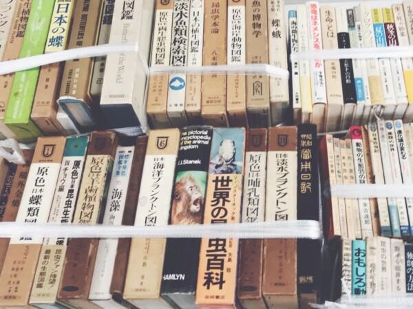 兵庫県西宮市にて、昆虫、植物、数学、自然科学に関する古本の出張買取