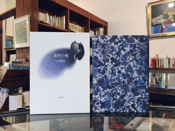 柄澤齊『銀河の棺』 | 柄澤齊オリジナル木口木版画1葉入 | 1994年初版・小沢書店 | エッセイ・版画